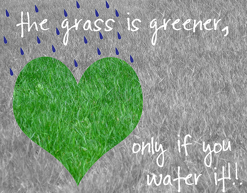 Grass Is Always Greener Quotes: The Grass Is Greener Where You Water It